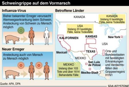 schweinegrippegrafik