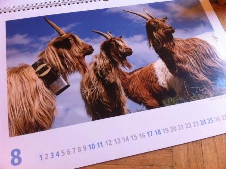 LID-Kalender